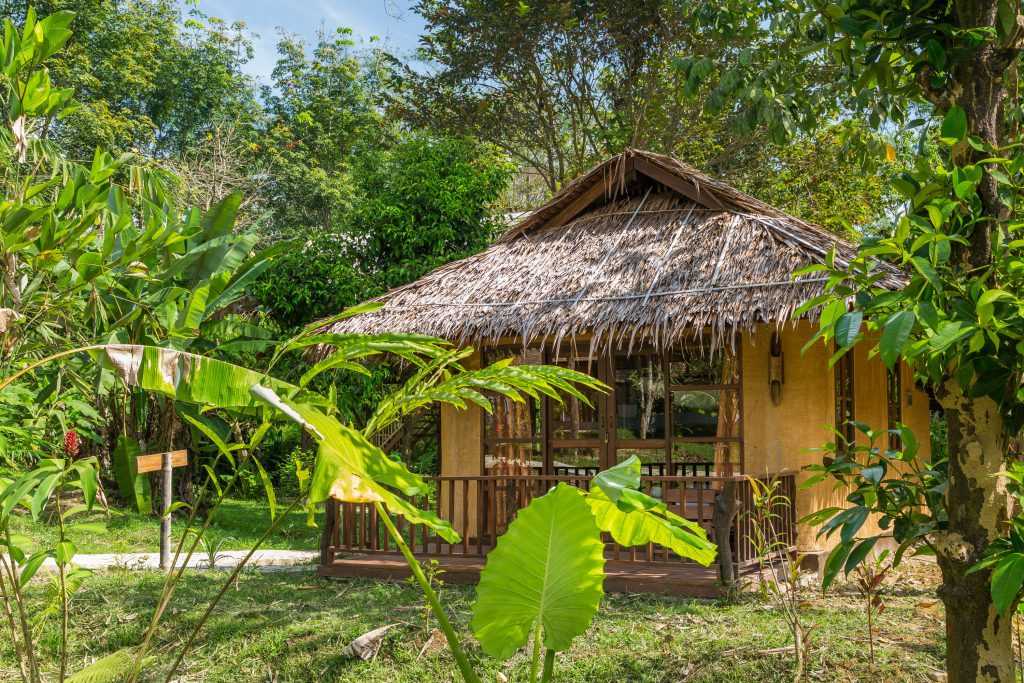 Earth House accommodation at Our Jungle Camp