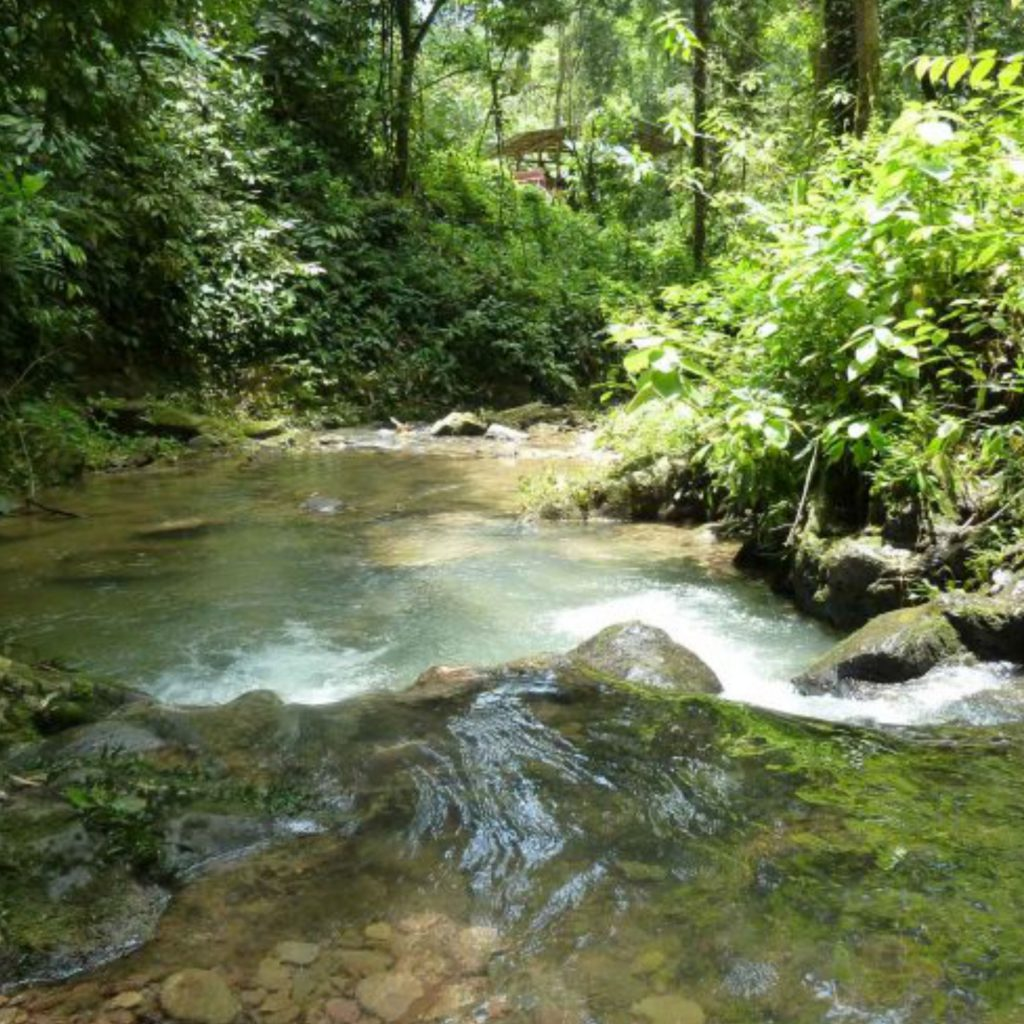 Hiking in Khao Sok - Our Jungle Camp