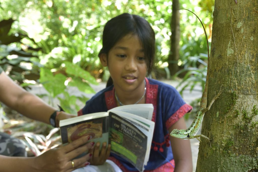 School camps in Khao Sok national park - Our Jungle Camp