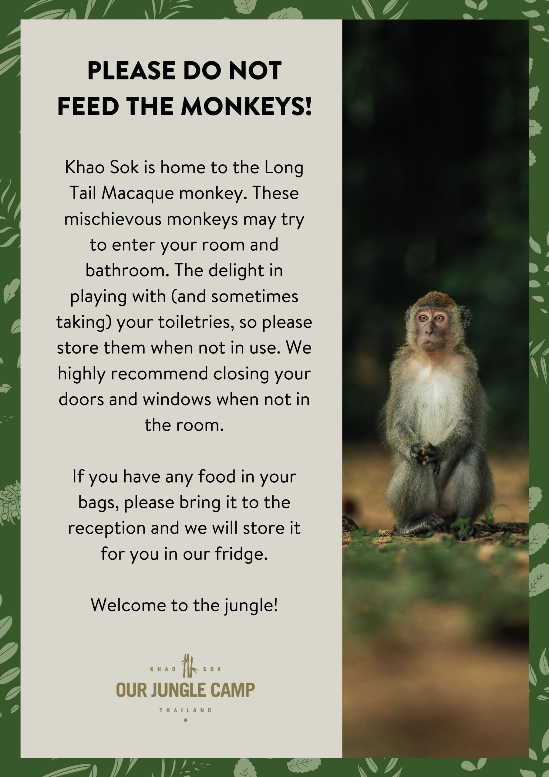 We ask you not to feed the monkeys at the resort and urge you to keep your distance and to close your doors and windows during dawn and dusk hours as Macaque Monkey pays frequent visits to our resort and very much enjoy our guest's food and hygienic products.